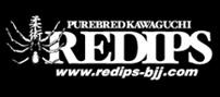 banner-redips1